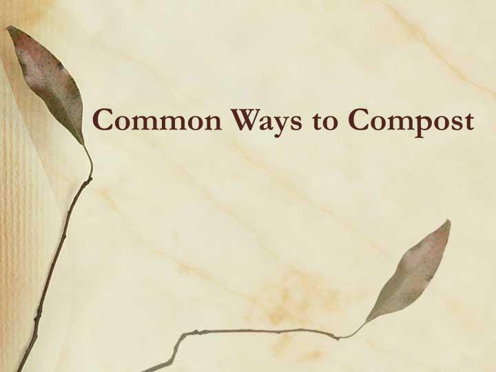 Common Ways to Compost