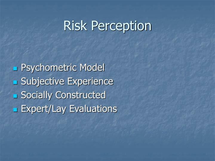 Risk Perception
