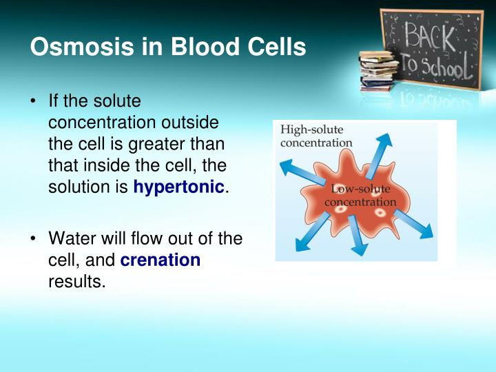Osmosis in Blood Cells