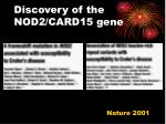 discovery of the nod2 card15 gene