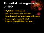 potential pathogenesis of ibd