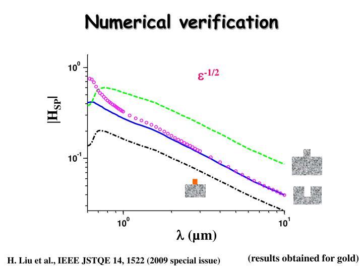 Numerical verification