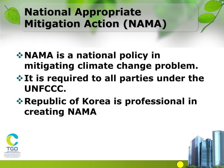 National Appropriate Mitigation Action (NAMA)