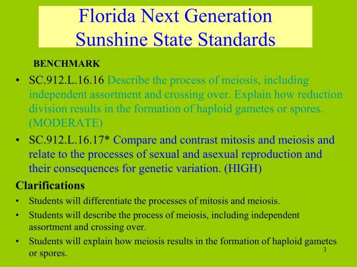 Florida Next Generation Sunshine State Standards