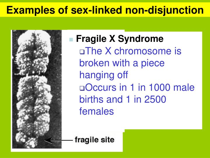 Examples of sex-linked non-disjunction