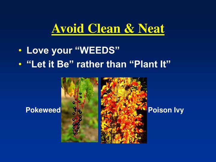 Avoid Clean & Neat