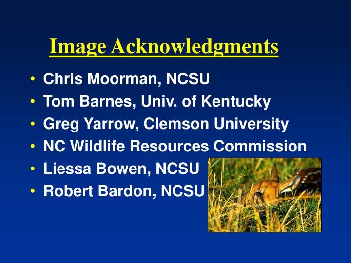 Image Acknowledgments
