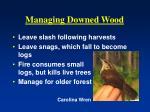 managing downed wood