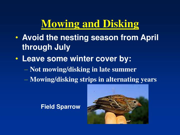 Mowing and Disking