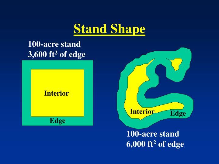 Stand Shape