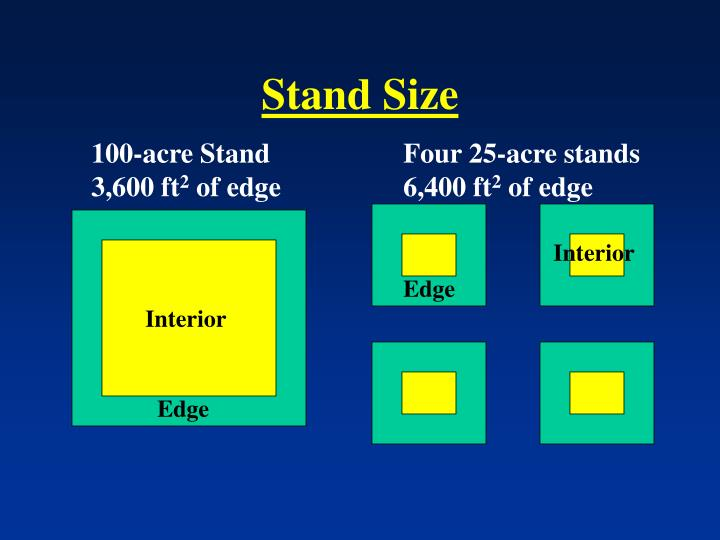 Stand Size