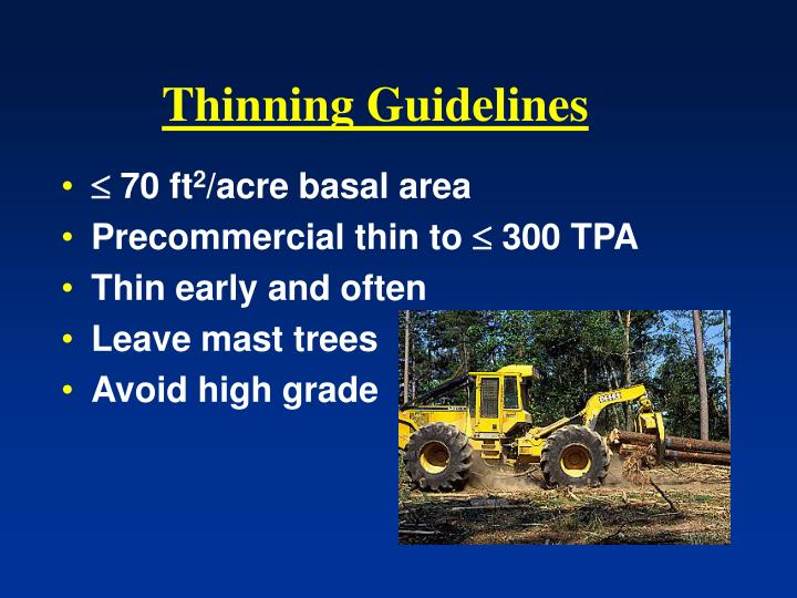 Thinning Guidelines