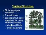 vertical structure1