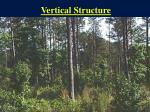 vertical structure2