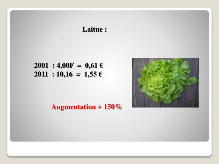 Laitue :
