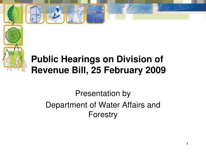 Public hearings on division of revenue bill 25 february 2009
