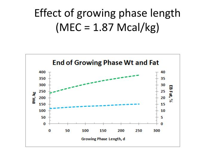 Effect of growing phase length