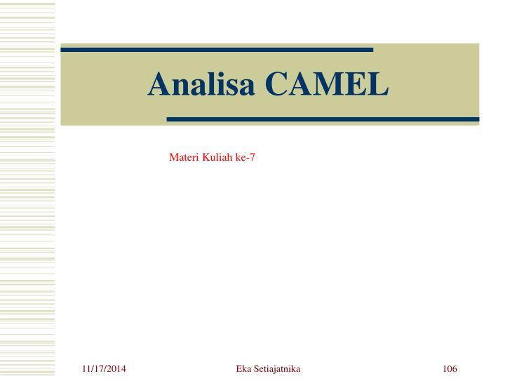 Analisa CAMEL