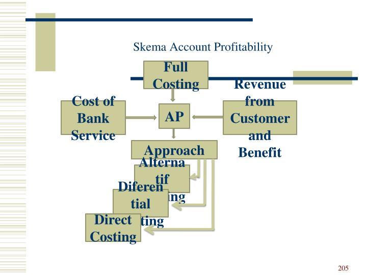 Skema Account Profitability