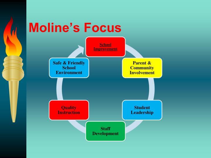 Moline's Focus
