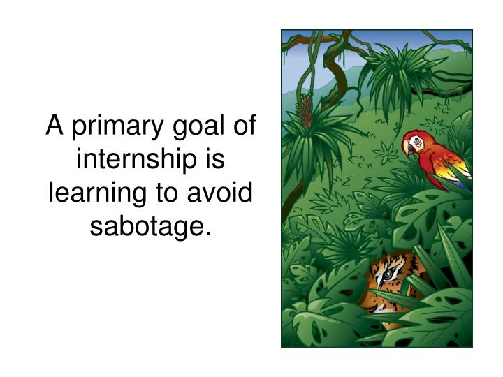 A primary goal of internship is learning to avoid sabotage.