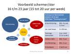 voorbeeld schermer ster 16 t m 23 jaar 15 tot 20 uur per week