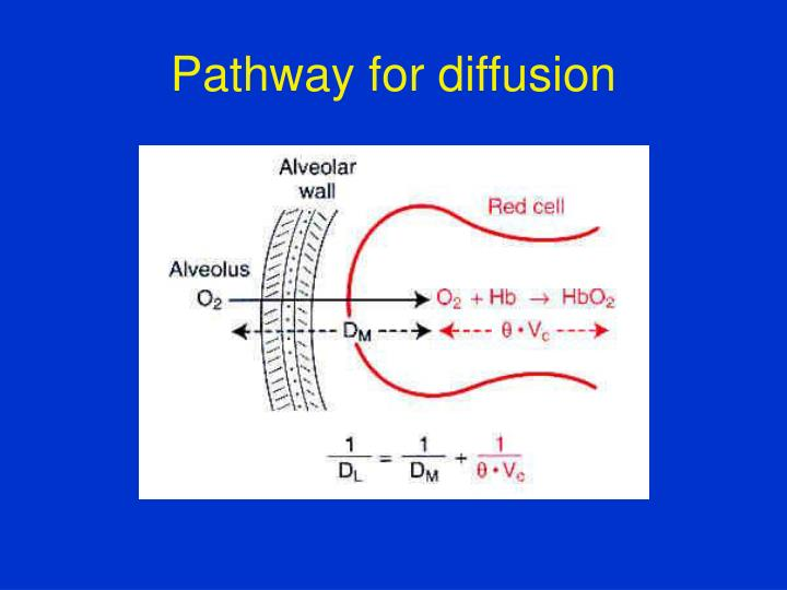 Pathway for diffusion