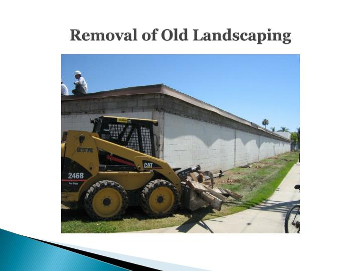 Removal of Old Landscaping