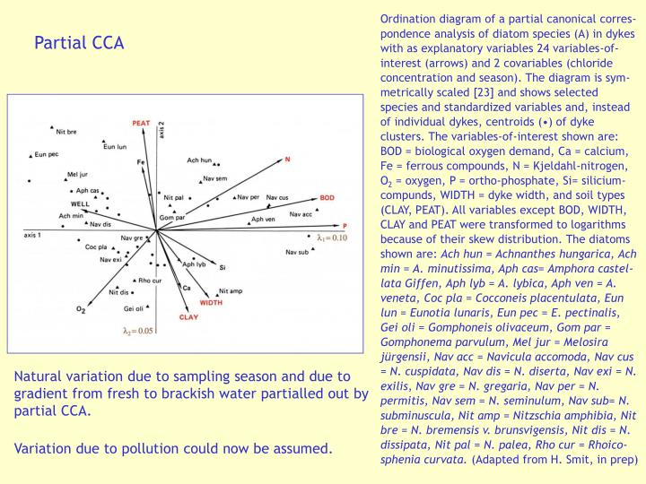 Ordination diagram of a partial canonical corres-pondence analysis of diatom species (A) in dykes with as explanatory variables 24 variables-of-interest (arrows) and 2 covariables (chloride concentration and season). The diagram is sym-metrically scaled [23] and shows selected species and standardized variables and, instead of individual dykes, centroids (•) of dyke clusters. The variables-of-interest shown are: BOD = biological oxygen demand, Ca = calcium, Fe = ferrous compounds, N = Kjeldahl-nitrogen, O