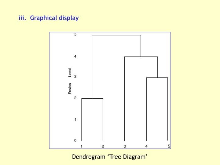 iii.  Graphical display