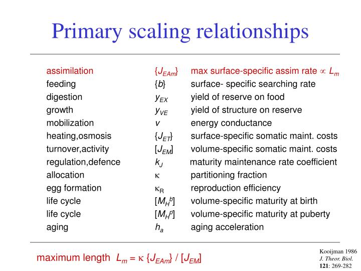 Primary scaling relationships