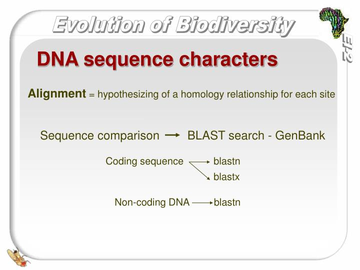 DNA sequence characters