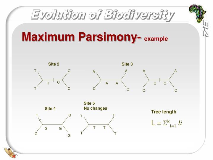 Maximum Parsimony-