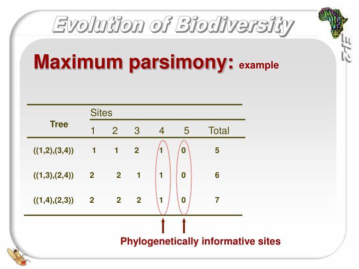 Maximum parsimony: