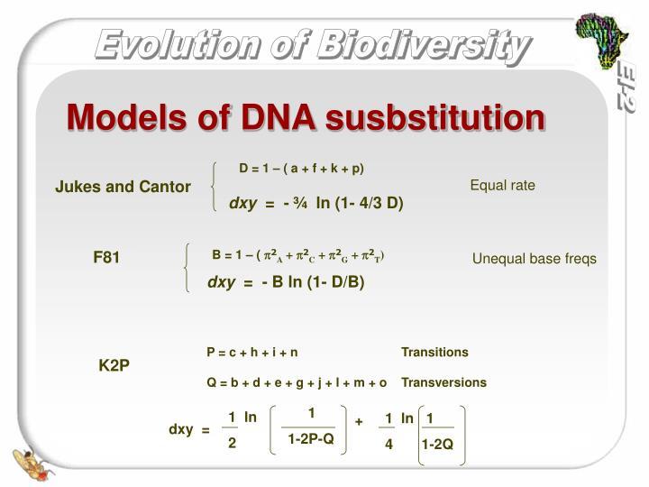 Models of DNA susbstitution