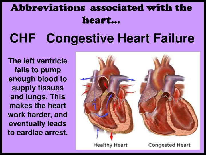 Abbreviations  associated with the heart…