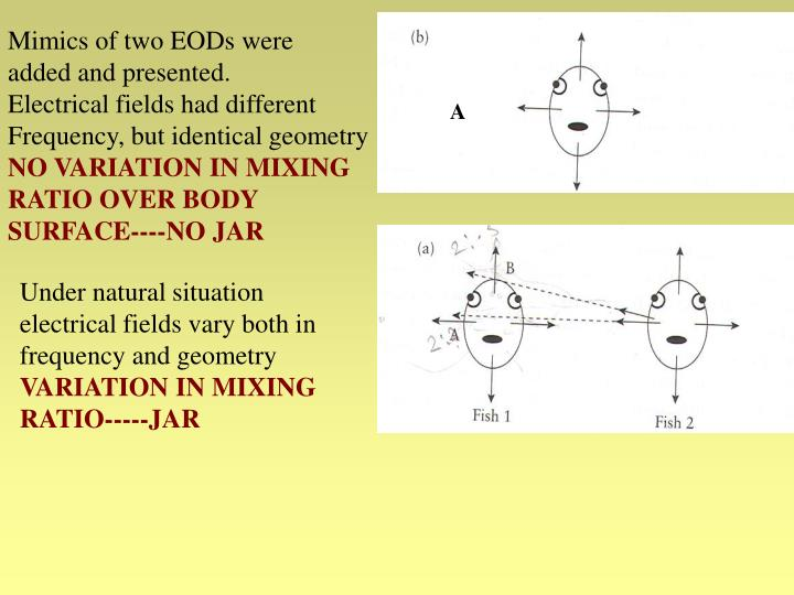 Mimics of two EODs were