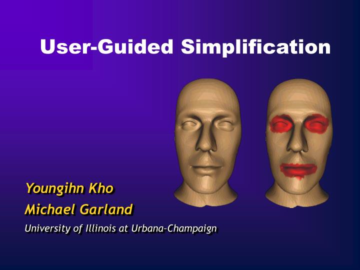 User guided simplification