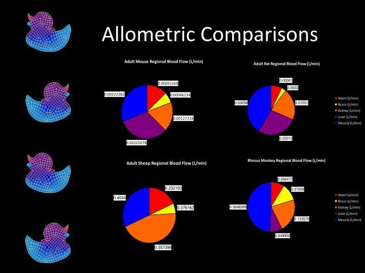 Allometric Comparisons