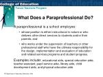 what does a paraprofessional do