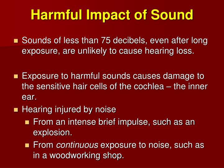 Harmful Impact of Sound