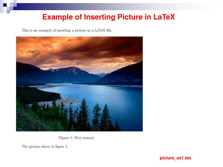 Example of Inserting Picture in LaTeX