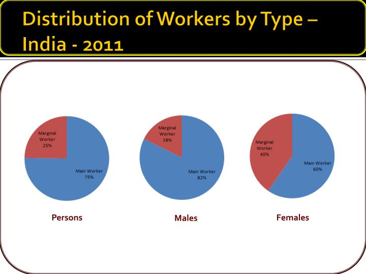Distribution of Workers by Type – India - 2011