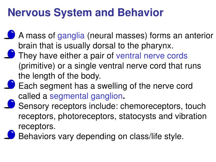 Nervous System and Behavior