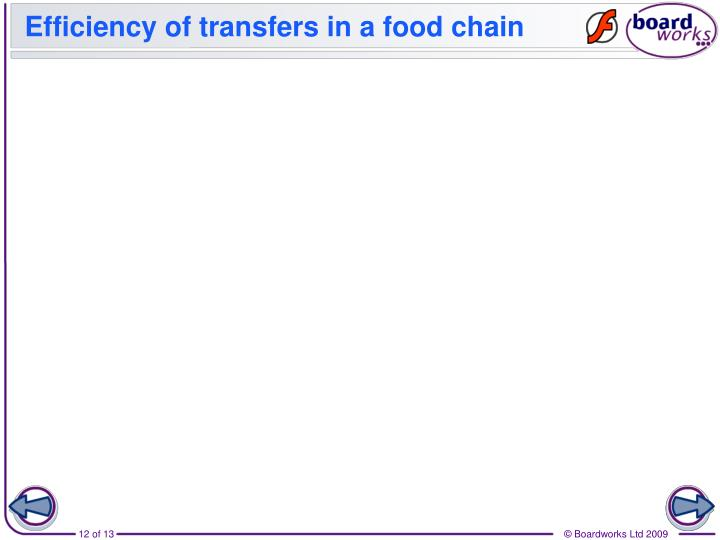 Efficiency of transfers in a food chain