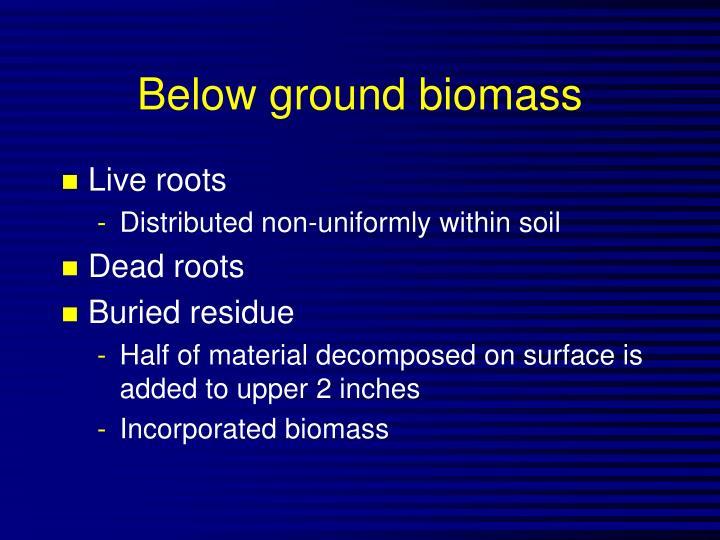 Below ground biomass