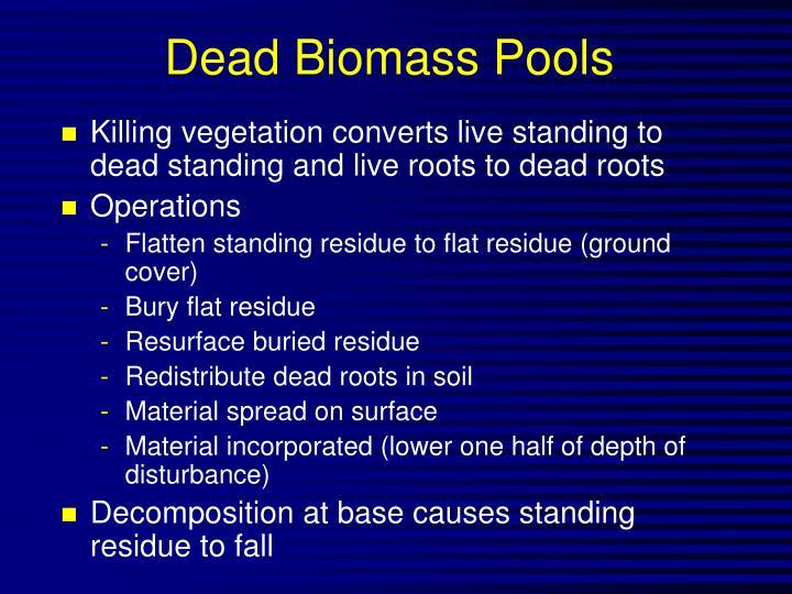 Dead Biomass Pools