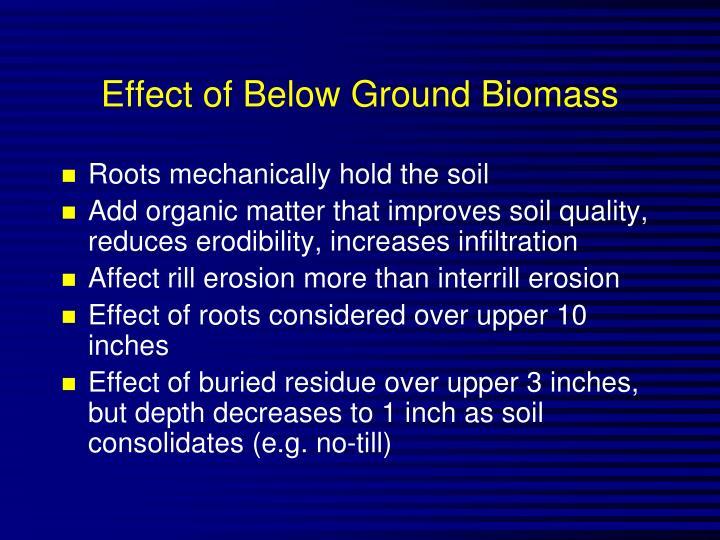 Effect of Below Ground Biomass