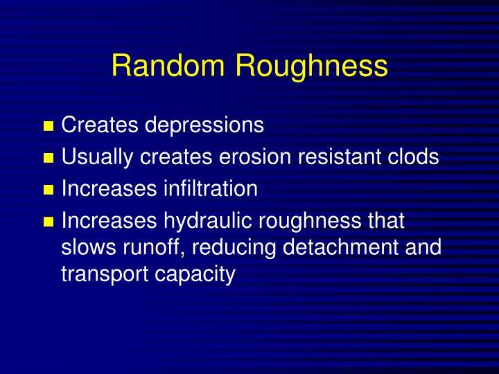 Random Roughness