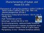 characterization of human and mouse es cells